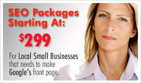 SEO service company packages for Naperville IL businesses